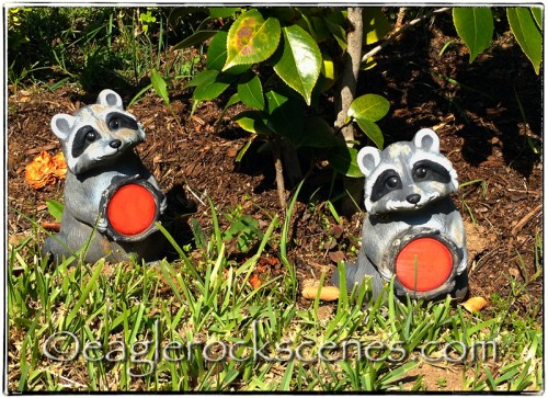 Whimsical raccoon reflectors