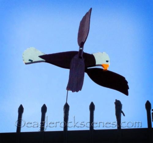 Eagle w/o Rock