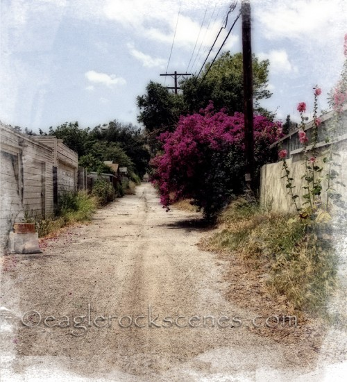 An alley off Ellenwood Drive