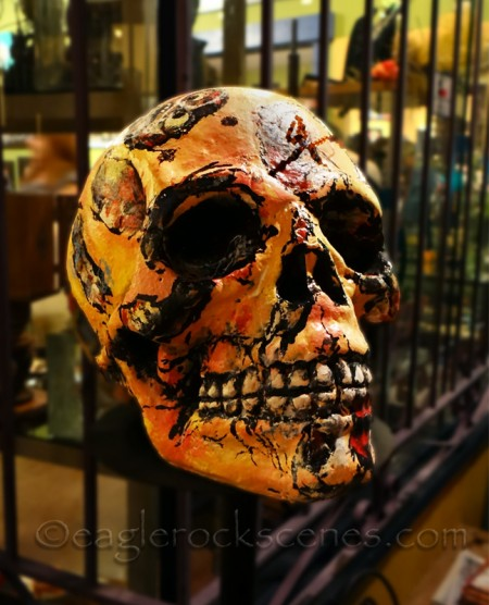 Welcoming skull... and yes I masked and blurred the background