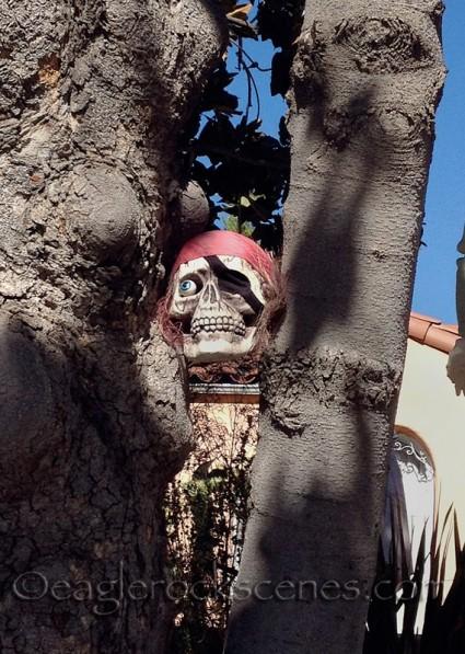 Pirate skull