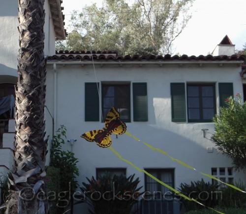 Kite flying past my neighbor's house