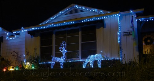 Reindeer on Hill Drive