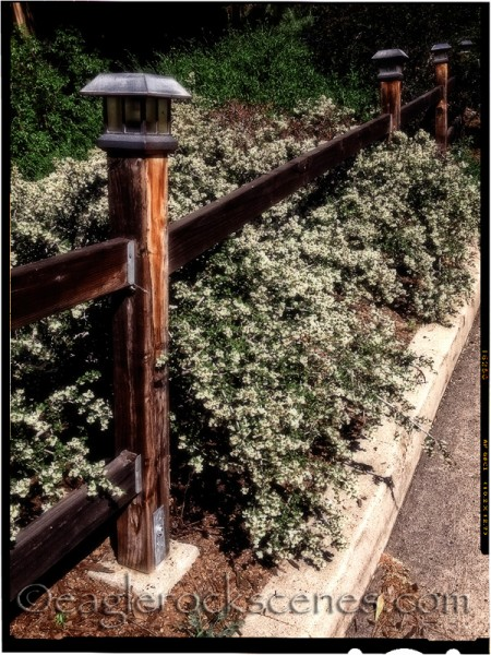 Fence posts, with a lot of photo editing effects
