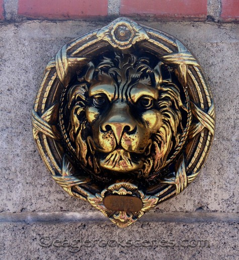 Brass Lion Head