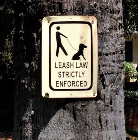 Leash law strictly enforced