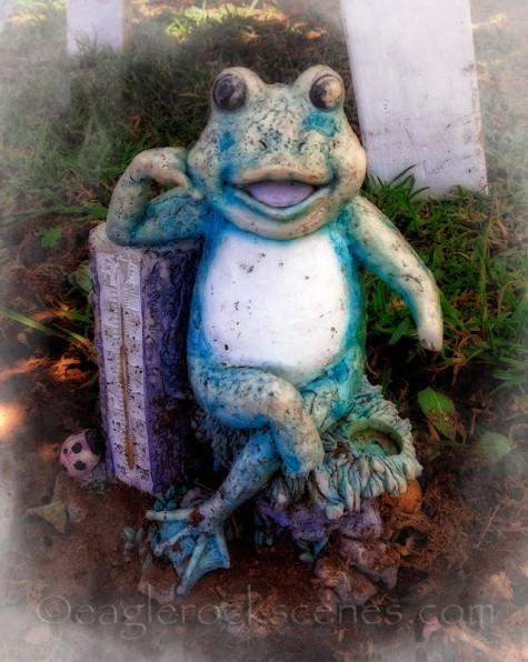 Yard frog