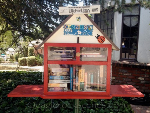 Hill Drive Lending Library