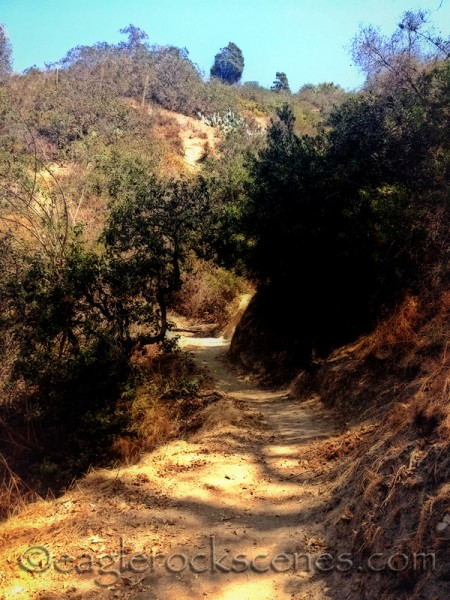 heading up the Eagle Rock Canyon Trail