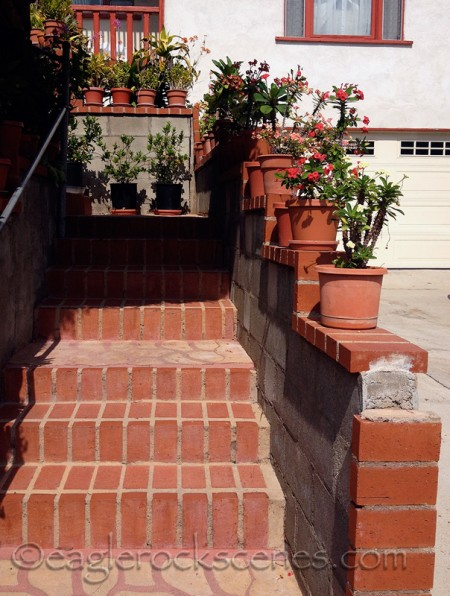 steps with pots and plants