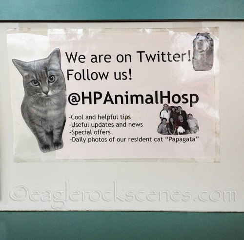 Taped to the counter of Highland Park Animal Hospital