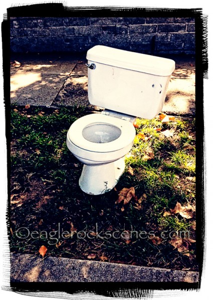 Toilet on the curb