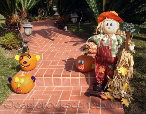 Harvest Greetings from sunny southern California