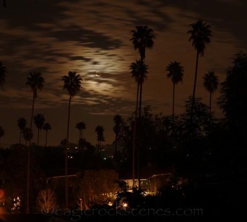moon from my backyard