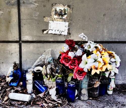 Memorial under the 134 freeway