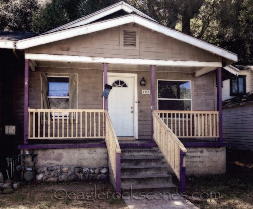 Craftsman with purple accents