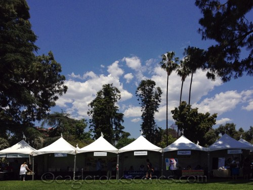 A beautiful but hot day for a LitFest
