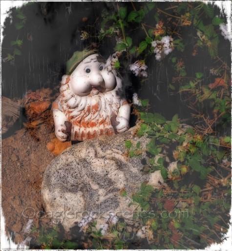 yard gnome
