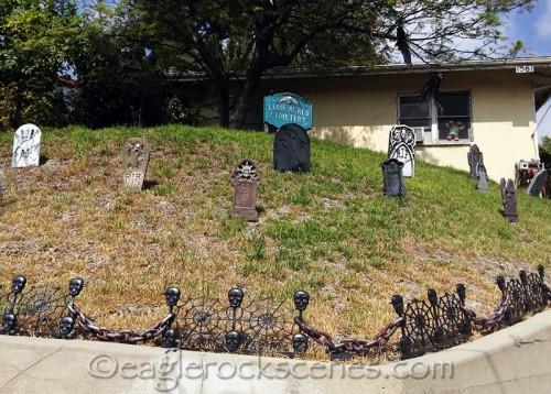 Front yard turned graveyard